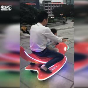 广州增城区鲤鱼飞车项目